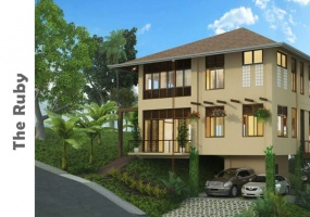 House and Lot in Balamban for sale